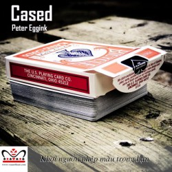 Cased by Peter Eggink